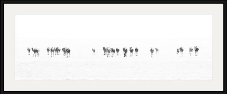 Screen Shot 2016-05-16 at 21.57.50